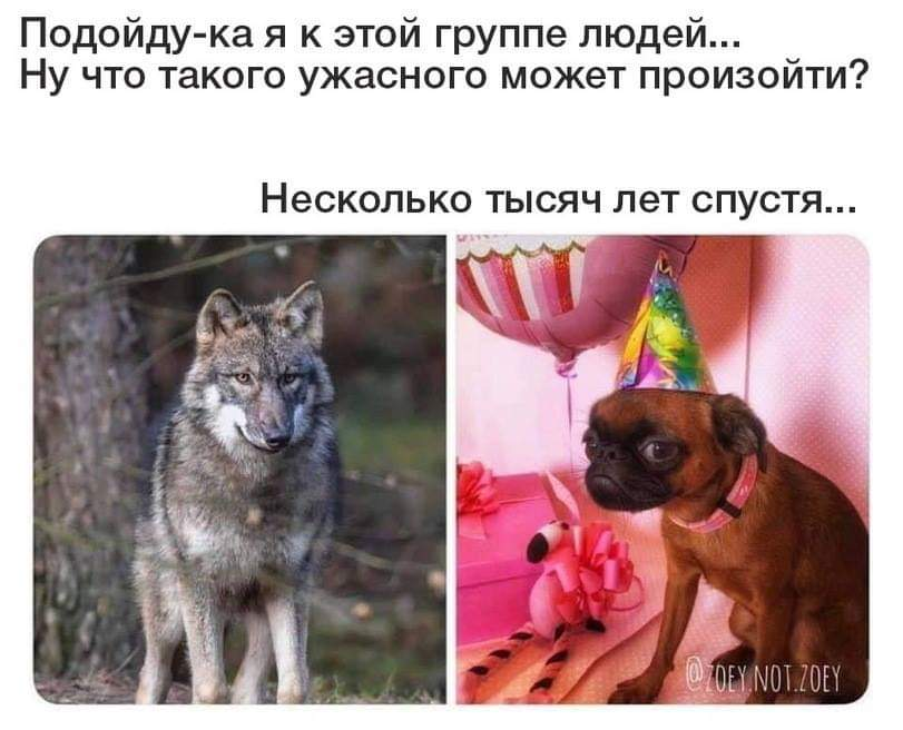 http://s7.uplds.ru/MqBUD.jpg