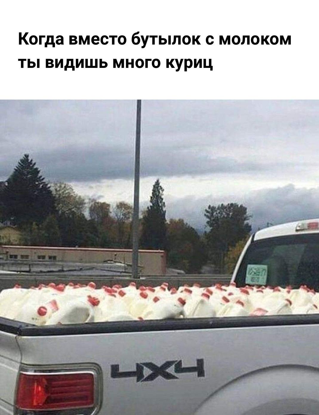 http://s7.uplds.ru/uHh98.jpg